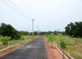 plots for Sale in kothavalasa, vizag-real estate in vizag-alamanda sai brundavanam
