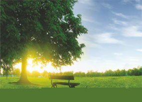 plots for Sale in , vizag-real estate in vizag-oak valley