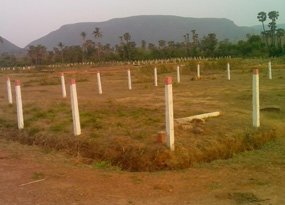 plots for Sale in , vizag-real estate in vizag-sai brindavan gardens